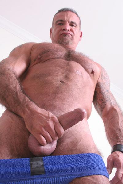 greyfox mature gay dvd
